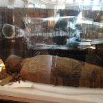 redpath mummy