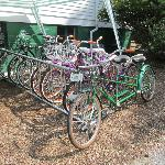 Bicycles for guests