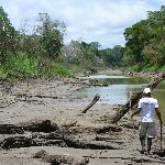 Low water season - river banks preferred by butterflies!