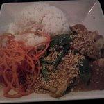 Thai curry penan chicken