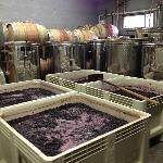 Don't forget to tour the wine-making room!