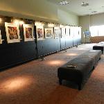 Exposiciones de artistas de la zona