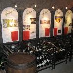 Mosel-Vinothek & Wine Museum