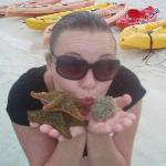 2 starfish and a female urchin