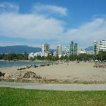 20 min walk to Elizabeth Bay