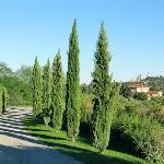 San Gimignano desde la entrada
