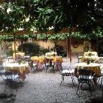 The garden, excellent for breakfast and afternoon cold beer.