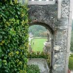 thru the arch in the garden