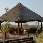 the outdoor LOBBY, overlooking the Savannah and Waterhole