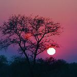 a sunrise at Nkorho--- Morning Game Drive