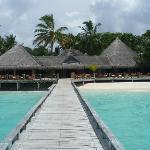 Laguna Bar