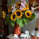 Fresh flowers to welcome you