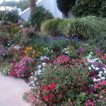 I bellissimi giardini intorno al Tempio