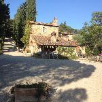 Besuch Fattoria La Viala nähe Fibochi/Montevarchi