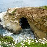 The La Jolla Caves