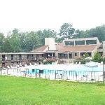 Pin Oak Lodge pool view