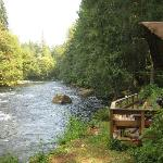 View of Little River (Cabin #4) and the river