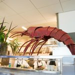 Fres, really FRESH seafood