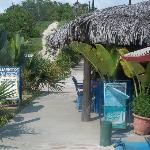 Entrance to Mariscos Mi Costa