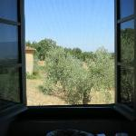 view from Vigna kitchen window
