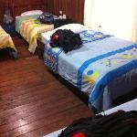habitacion de 4