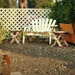 Private garden for Hollyhock