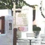 Lotus Taverne
