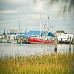 A view of shrimpboats across the marsh grass in Beaufort