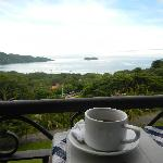 Coffee with a view? loved waking up to this view while eating breakfast. Watched monkeys play