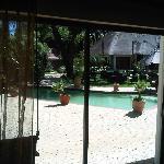 Blick vom Zimmer auf Pool und Garten