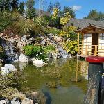 Molino del Inca-Torremolinos (Jardín japonés)