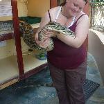 Sister and python