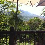 View from the deck at breakfast, stunning gardens.