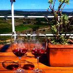 Wine tasting view