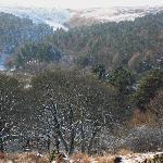 views of Ogden Water