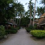 Path to back of resort