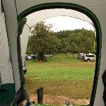View of the camping Orchard from our tent