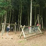 Woodland playarea