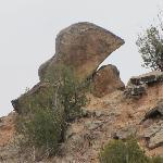 Special Rock