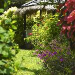 Superior Garden Cottage Patio, a shady place to relax.