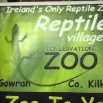 reptile village poster