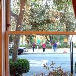 Chinese ladies exercising in Washington Park--view from breakfast table