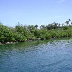 Snorkel spot near Coconut Island