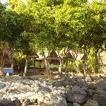 heerlijke bungalows