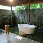 The toilets/bathroom + red fish around bathtub