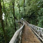 Stairs to Rio Celeste waterfall