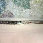 Mold at the top of the shower