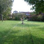 Spacious lawn area.