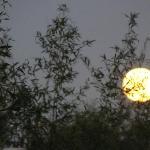 la luna de solsticio de otoño