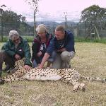 Spiers outreach cheetah sanctuary